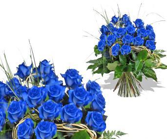 Modrá růže květinářství